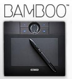 Wacom Bamboo digital graphics tablet