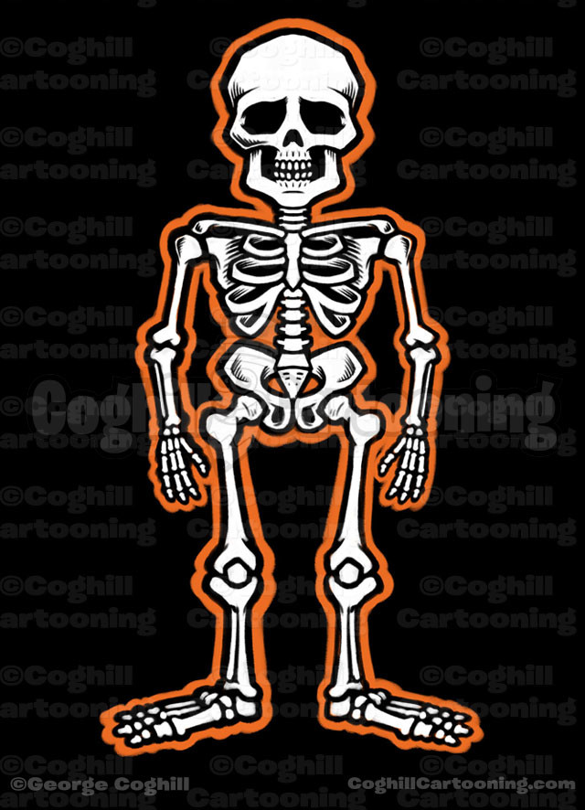 Skeleton Cartoon Illustration Coghill