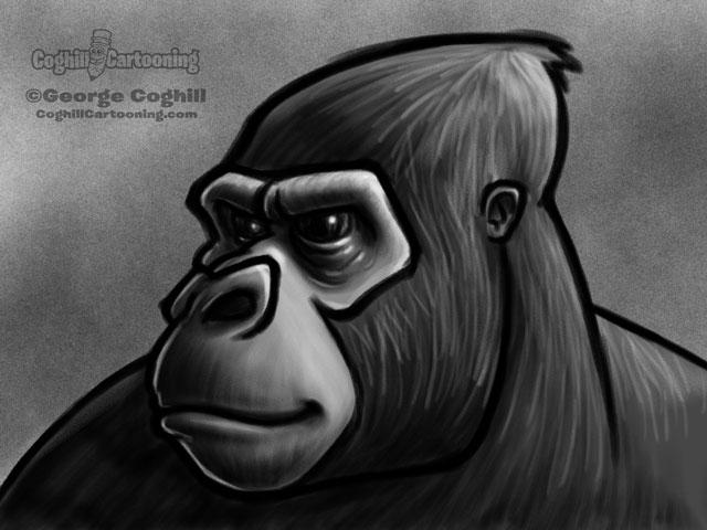 Gorilla Head 1 Cartoon Character Sketch